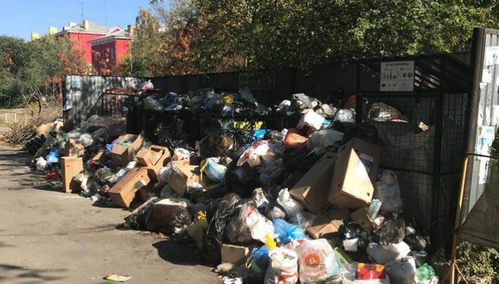 «Цену за вывоз мусора пересчитают»: глава Челябинского УФАС рассказала, что грозит регоператору