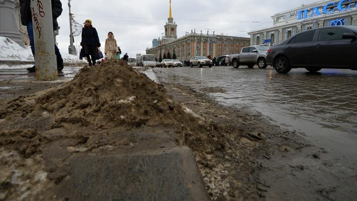 14 друзей Екатеринбурга: уральцы создали комитет, чтобы спасти город от грязи
