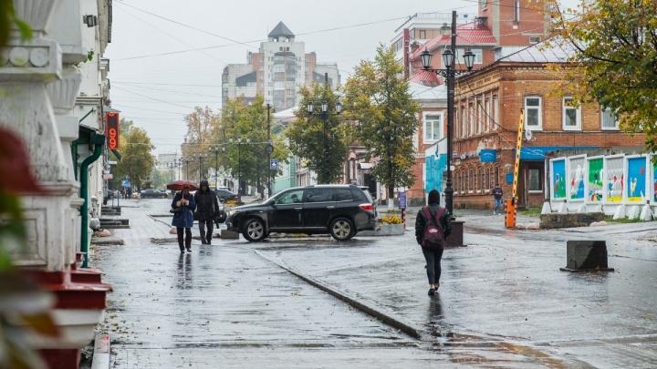 В Прикамье из-за сильного ветра продлили штормовое предупреждение