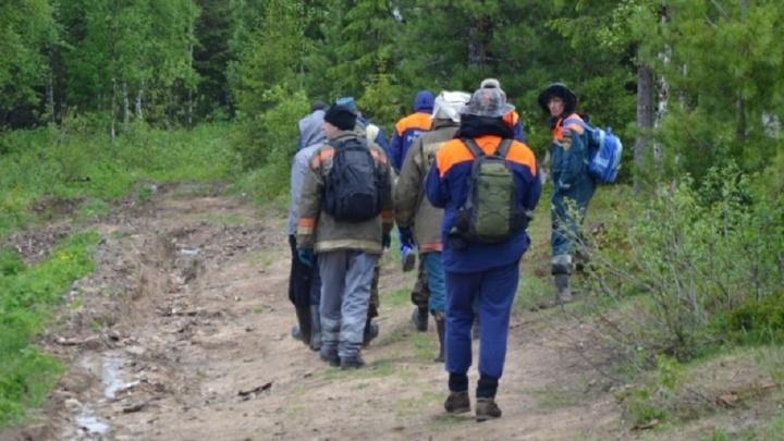В месте поисков пропавшего 4-летнего мальчика на Рефтинском водохранилище квадрокоптер обнаружил медведя