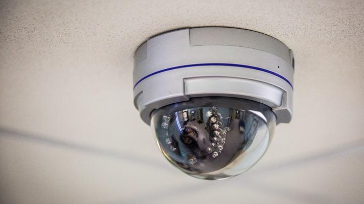 Новосибирские учёные разработали искусственный интеллект для слежки за работниками
