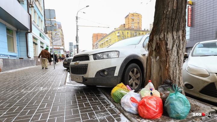 Дон за чистоту: нарушителей в 2018 году оштрафовали на 55 миллионов рублей