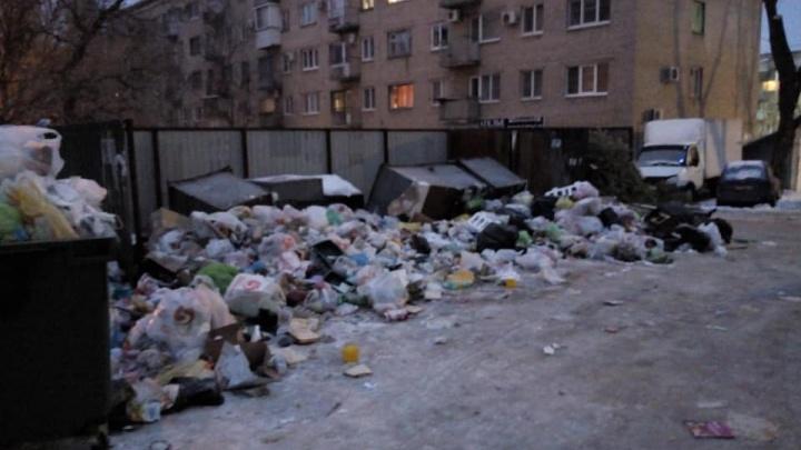 «Оператор решает проблемы по-своему»: из-за новых баков свалки в Волгограде растут быстрее прежнего