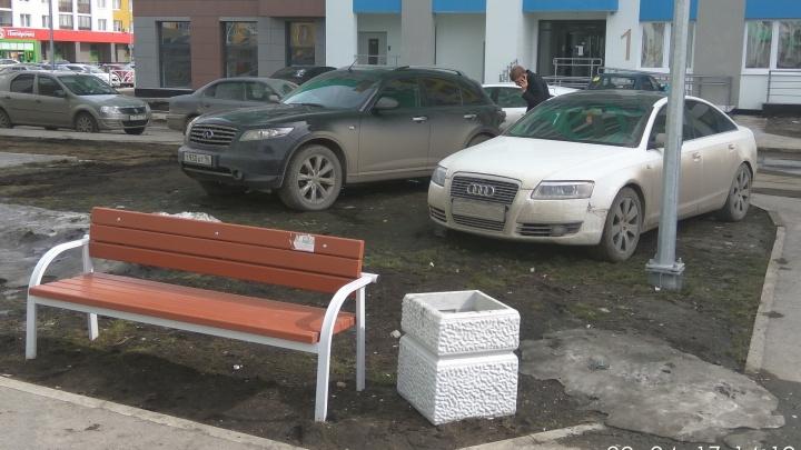 Бизнес на газонах: екатеринбурженка придумала победить грязь в городе свежей травой