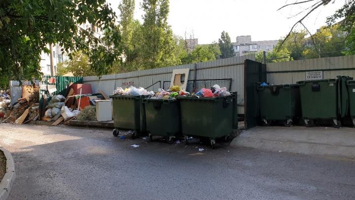«Все наладилось — и вот опять»: двор на севере Волгограда утопает в мусоре