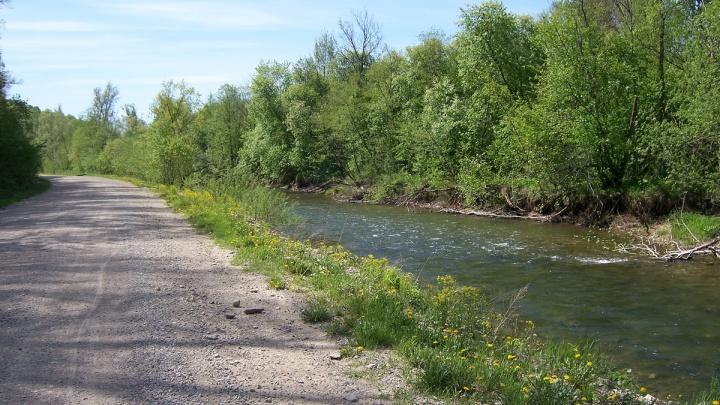 «Взрослых рядом не оказалось»: в Челябинской области утонул пятилетний ребёнок