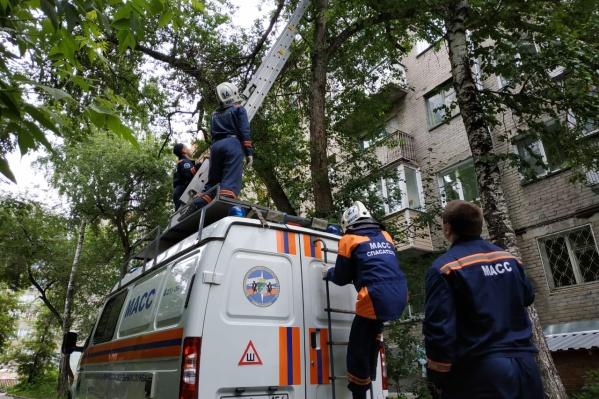 Спасательная операция длилась около 10 минут