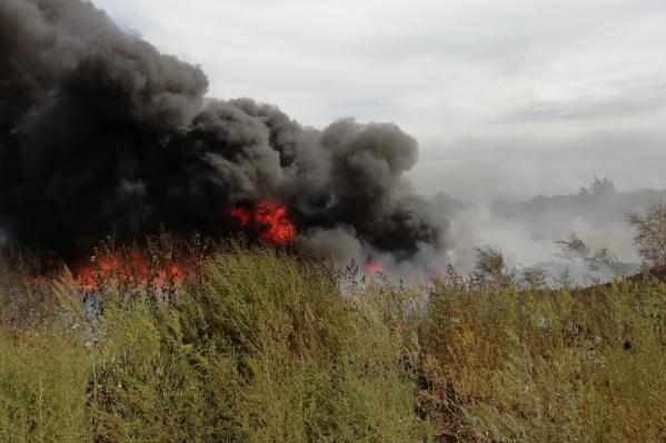 Вот как выглядел пожар вблизи