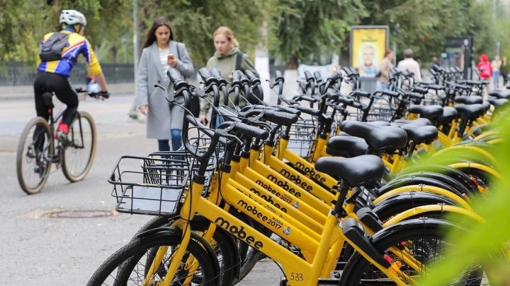 «Пытался замять дело и откупиться»: волгоградец на дорогой иномарке украл велосипед из проката