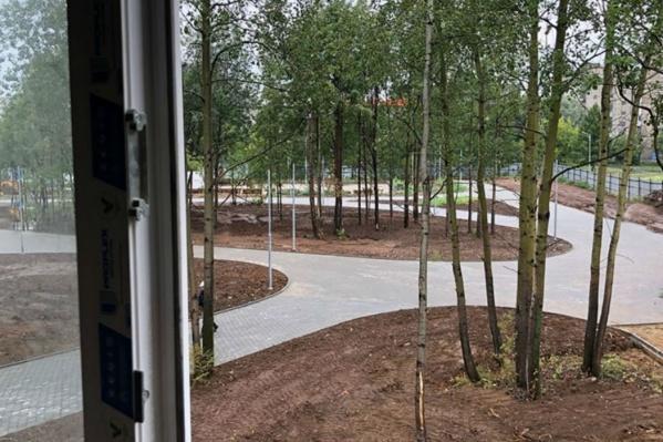 Вид из административного здания зоопарка