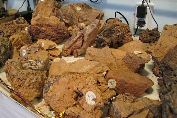 Обломки из музеяСибирского общественно-государственного фонда «Тунгусский космический феномен»
