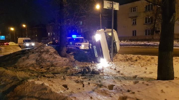 «Водитель еле стоял на ногах»: в Ярославле машина врезалась в дерево. Кадры с места