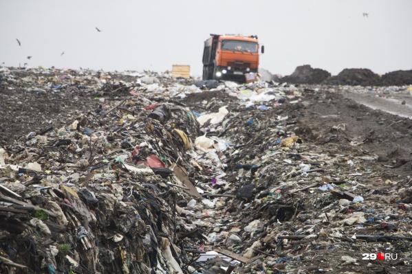 Архангелогородец уверен, что мусор будут, как и раньше, свозить на свалку
