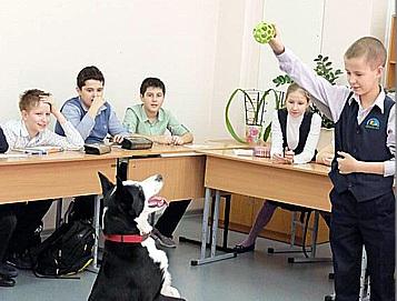 Школьница исследовала влияние собак на людей и написала научную работу