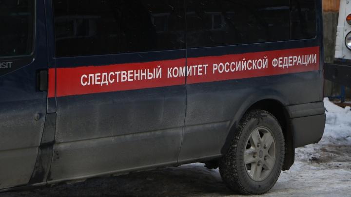 Подозреваемый в изнасиловании ребенка нижегородец найден мертвым в СИЗО