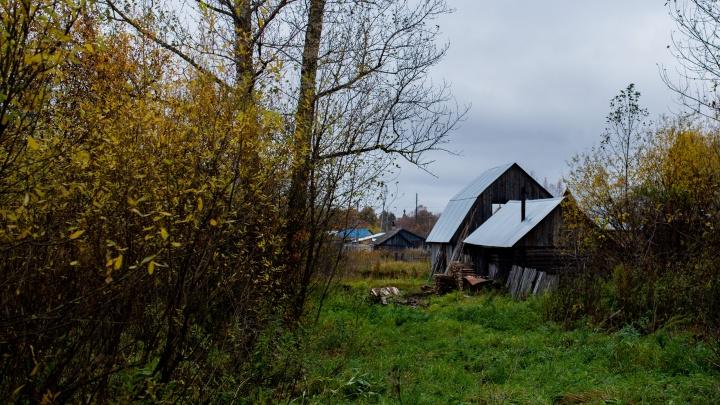 В Ярославле пенсионер убил больную раком жену и сжёг миллион рублей