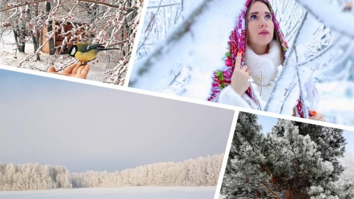 Рождественская сказка: 25 кадров Тюмени, покрытой инеем