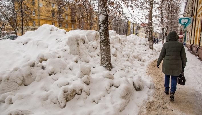 Мэр Ярославля заставит убирать город всех владельцев недвижимости