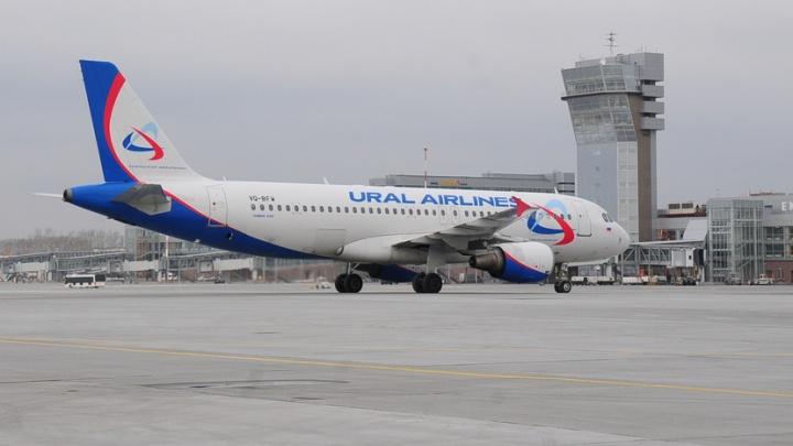«Уральские авиалинии» перестали кормить пассажиров на коротких рейсах