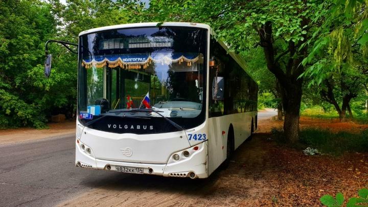 Девушка-автобус: необычная модель сделала фотографом волгоградского водителя