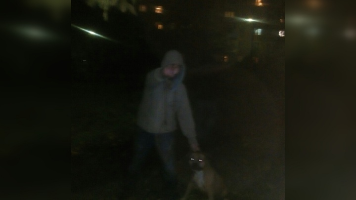 «Стаффорд бросился по команде хозяина»: на ярославну и её пса напала бойцовская собака