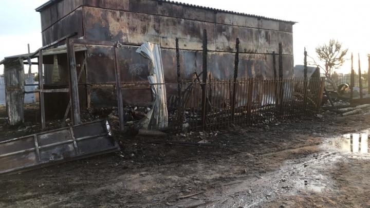 «Мы не успели спасти пони и пятерых лошадей»: в Волжском сожгли конюшню конноспортивного клуба