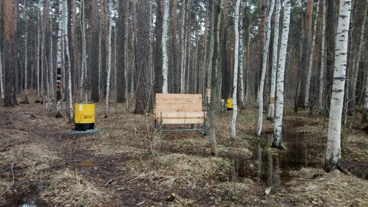 Екатеринбуржцы нашли незаконные шашлычные в Юго-западном лесопарке
