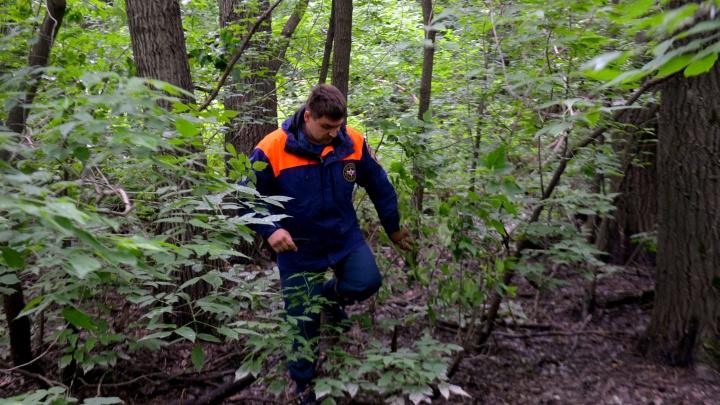 На Урале спасатели вывели из леса женщину с ребенком, которые пошли за шишками и заблудились