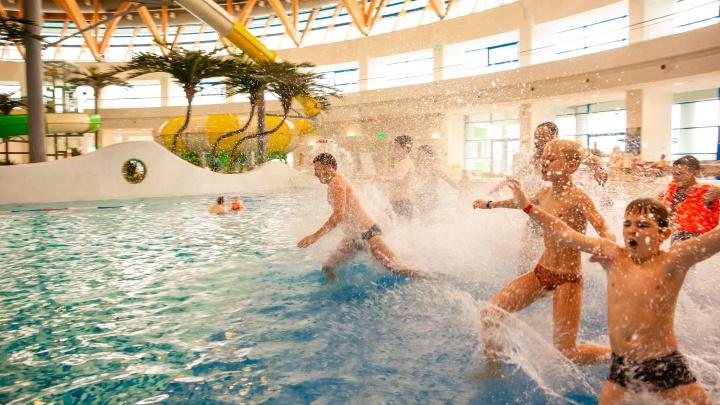 Три причины провести новогодние праздники ярко: Новосибирский аквапарк объявил о спецпредложениях и акциях