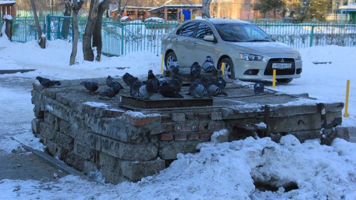 Стабильно за 30: рабочая неделя в Омске будет очень холодной