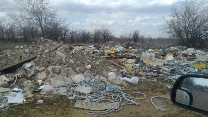 Силами студентов под эгидой защиты памятников: чиновники вывезли мусор с Лысой горы в Волгограде
