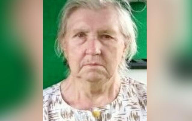 В Ярославской области десятки людей ищут бабушку с огромными мешками с лапником