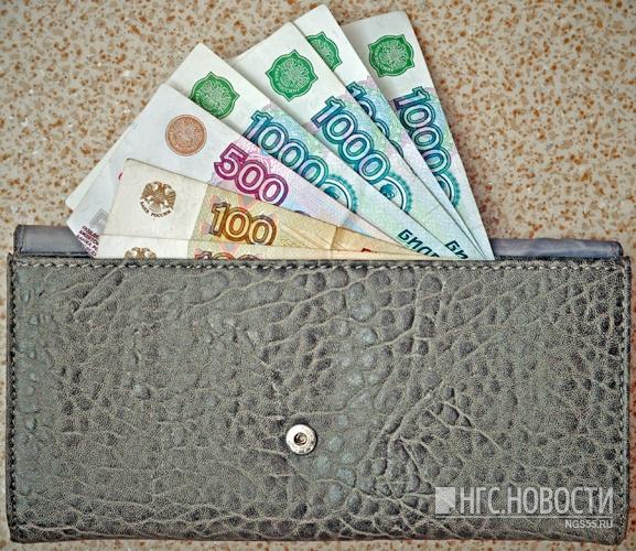 Более 27 тыс. работающих граждан Омской области зарабатывают менее прожиточного минимума