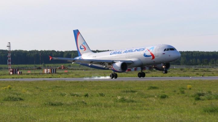 «Летящие с ЧМ иностранцы не поняли, что происходит»: в Тюмени на 12 часов задержали рейс в Москву