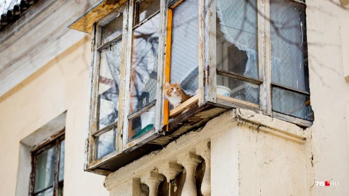 Кот и вечный Новый год: 15 необычных балконов, которые хозяева приспособили как могли