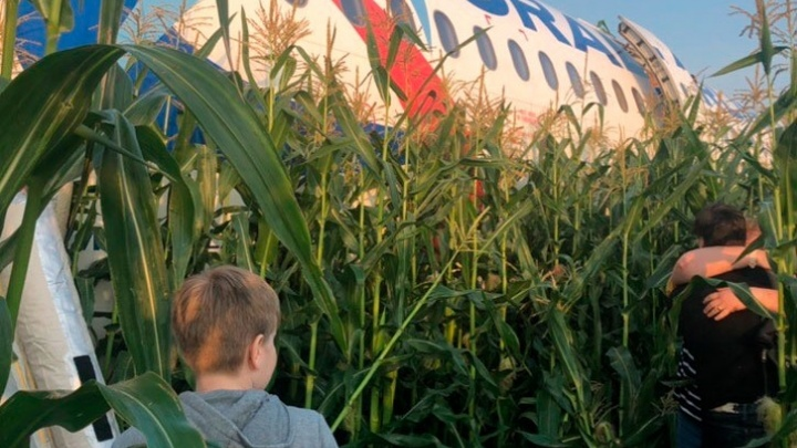 Фото самолета «Уральских авиалиний», севшего в кукурузном поле, стало лучшим за август на E1.RU