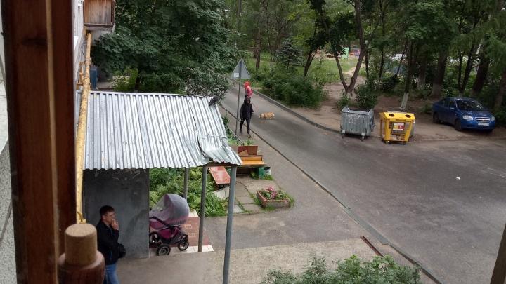 В Нижнем Новгороде парень упал из окна с петлёй на шее: петля — порвалась, карниз — спас от гибели