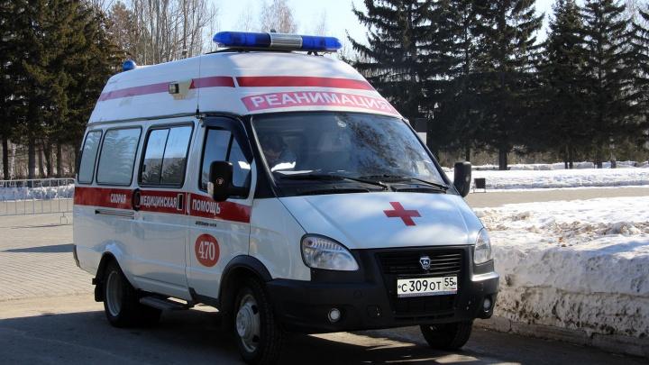 Водитель, который сбил двух школьников в Омской области, выплатит каждому по 200 тысяч