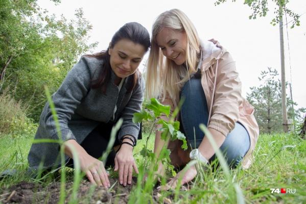 Дубокиз пророщенного жёлудя бережно вырастила наш SMM-редактор Наталья Капитова (слева)