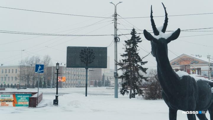 После зимнего дождя в Омск пришло похолодание