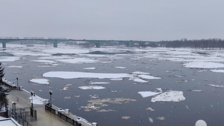 В Рыбинске уже плюс 8 сантиметров: вода в Волге снова поднимается