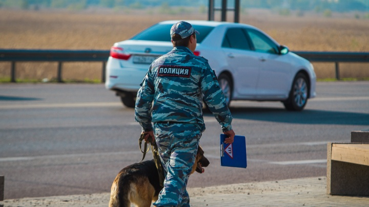 В Ростовской области разыскивают мужчину, предложившего ребенку заняться сексом