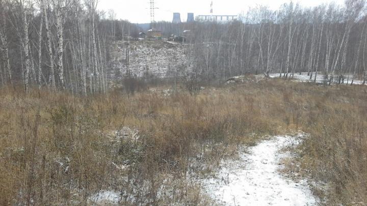 Трасса вместо оврагов: жители Плющихинского объединились для строительства горнолыжного комплекса