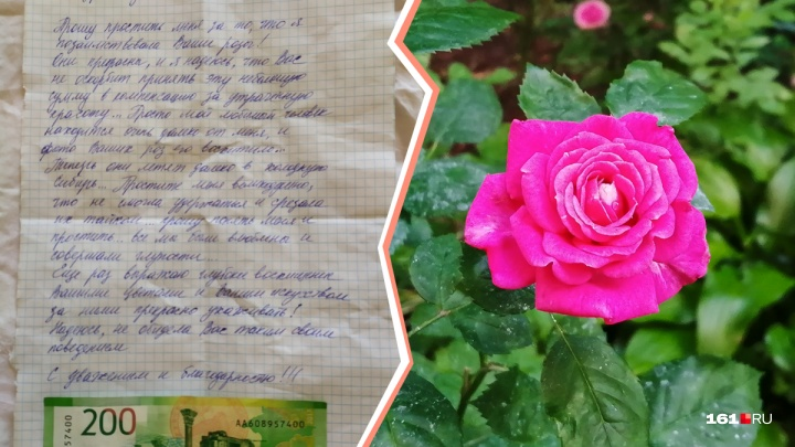 В Батайске воры рассчитались за срезанные розы