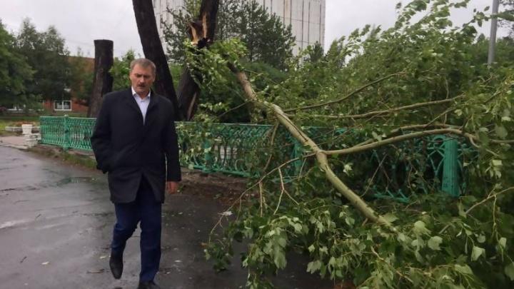Глава Архангельска попросил горожан помочь ликвидировать последствия шторма