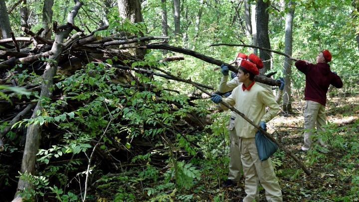 «Защита леса — наша задача»: десятки юнармейцев вышли на экоакцию «Газпром трансгаз Волгоград»