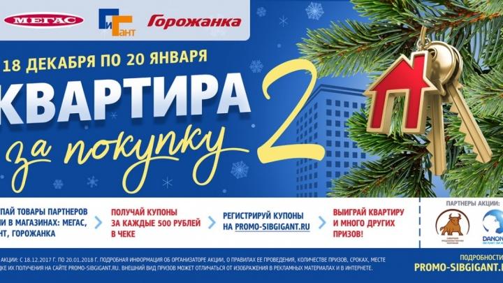 «Квартира за покупку – 2»: «Сибирский Гигант» назовет победителя в прямом эфире НГС 21 января