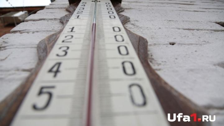 В Башкирии температура воздуха поднимется до нуля