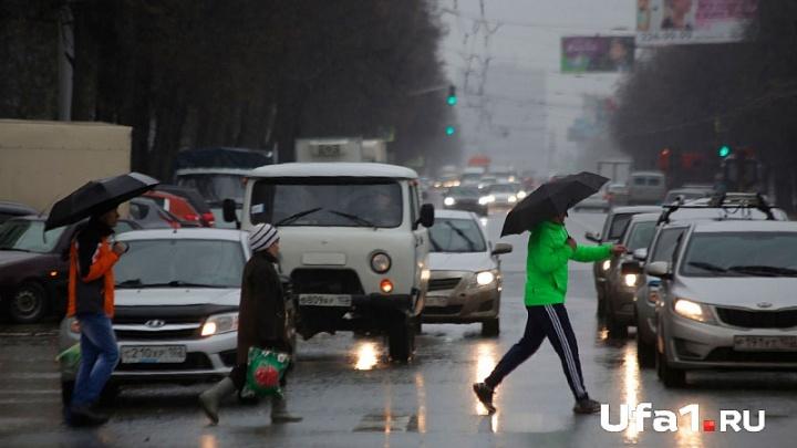 В Башкирии потеплеет, но будет сыро
