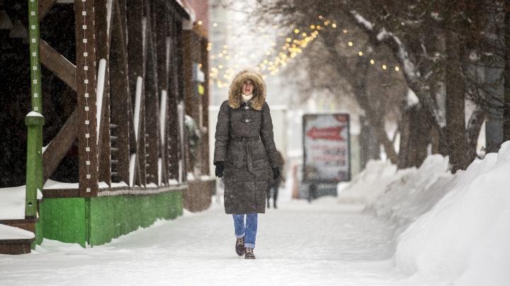 Ветер усилится до 20 м/с: к Новосибирской области идут метели